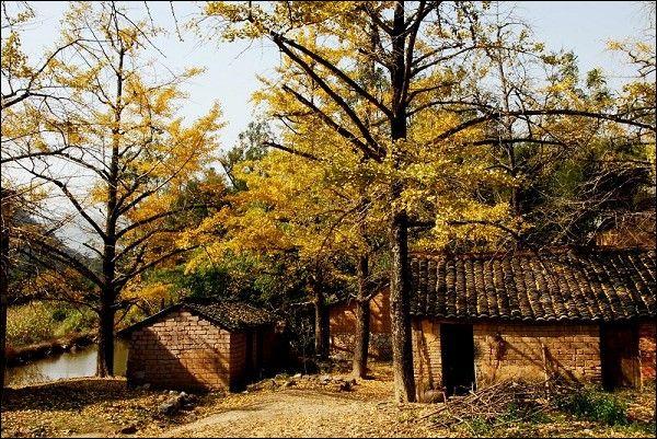 桂林灵川县辖区海洋乡