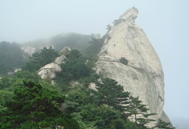 龟山风景区坐落在枣庄市市中区孟庄镇境内