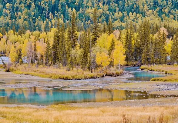一到秋天就美成了童话――新疆
